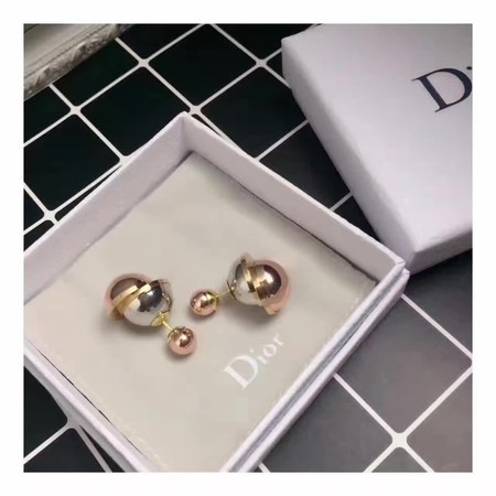 Dior Earrings CD4667