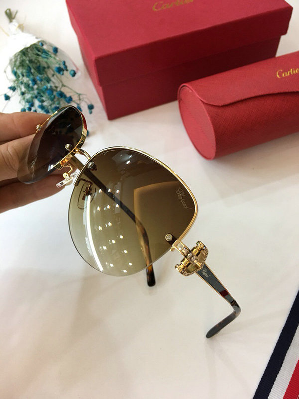 Cartier Sunglasses CTS18047035