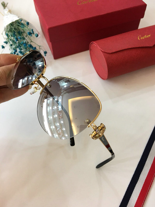 Cartier Sunglasses CTS18047036