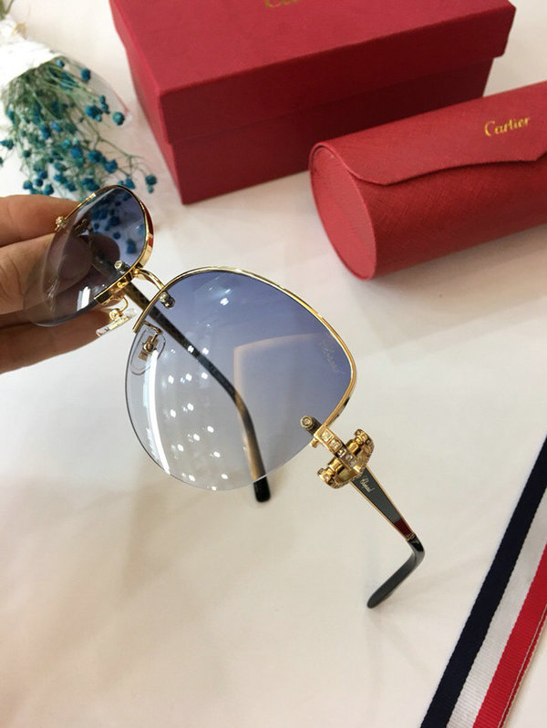 Cartier Sunglasses CTS18047038