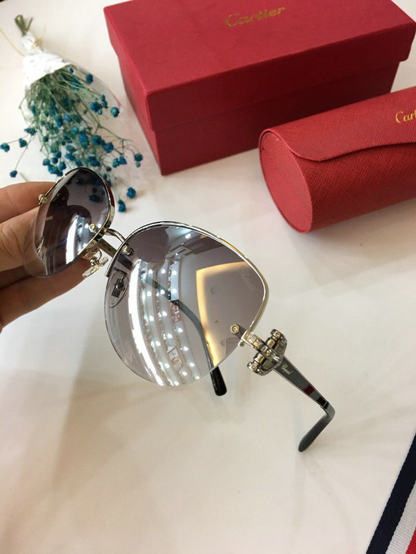 Cartier Sunglasses CTS18047039