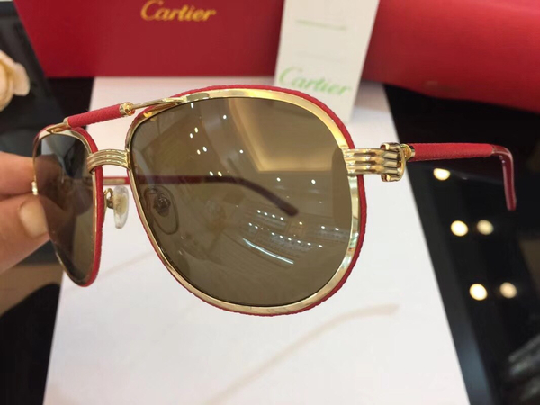 Cartier Sunglasses CTS18047049