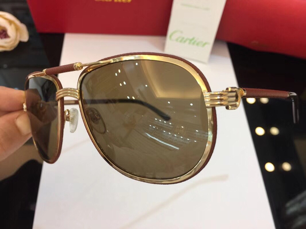 Cartier Sunglasses CTS18047051