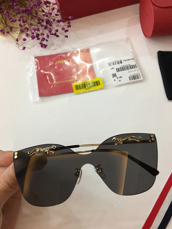 Cartier Sunglasses CTS18047054