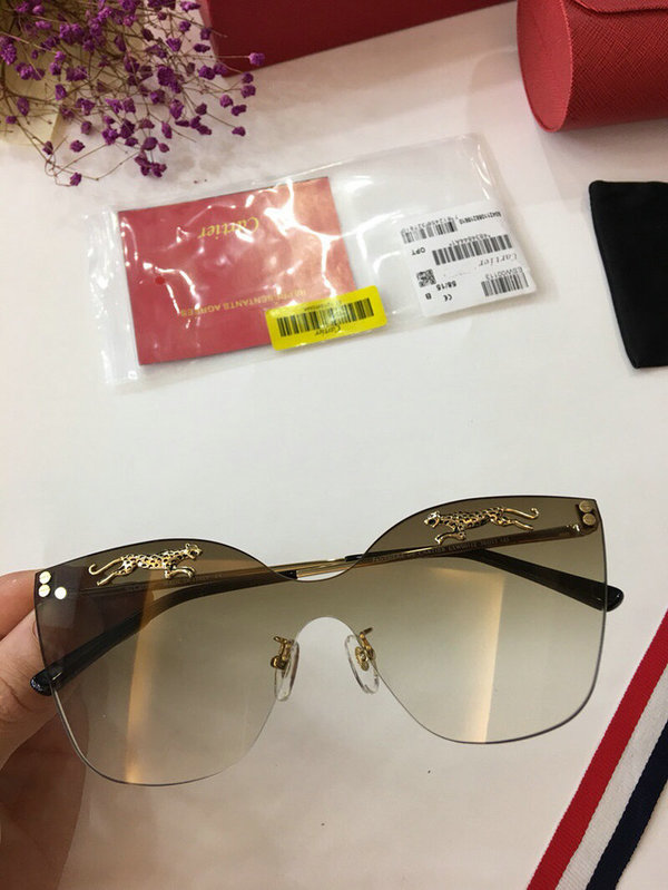 Cartier Sunglasses CTS18047056
