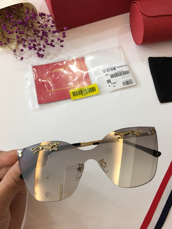 Cartier Sunglasses CTS18047057