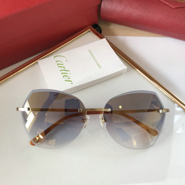 Cartier Sunglasses CTS18047069