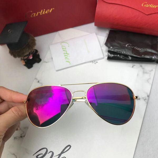 Cartier Sunglasses CTS18047070