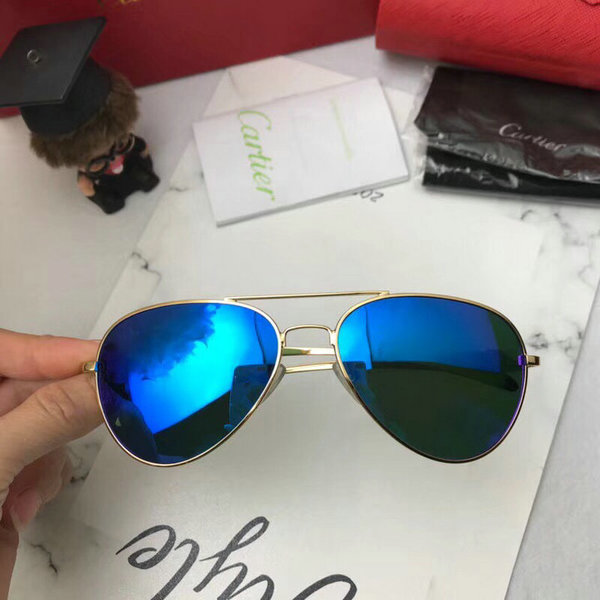 Cartier Sunglasses CTS18047073