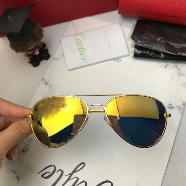Cartier Sunglasses CTS18047074