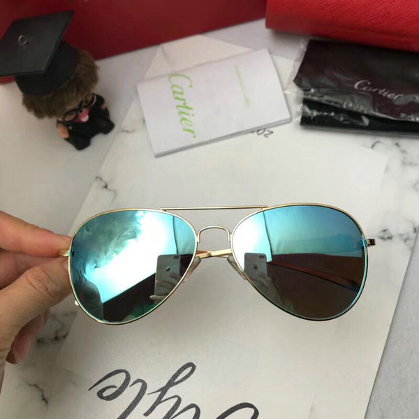 Cartier Sunglasses CTS18047075