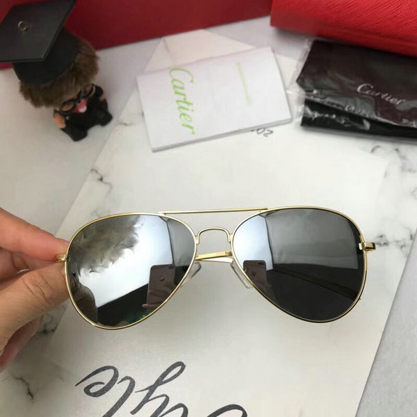 Cartier Sunglasses CTS18047076