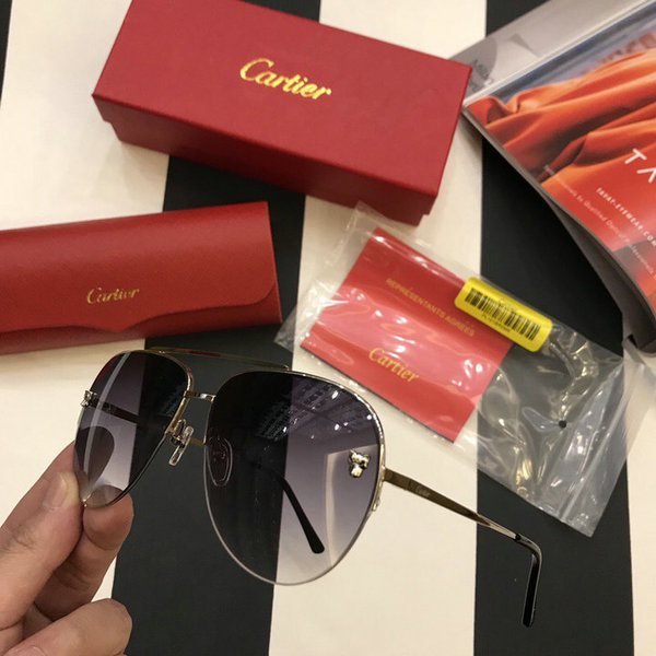Cartier Sunglasses CTS18047078