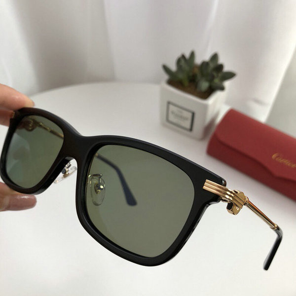 Cartier Sunglasses CTS18047082