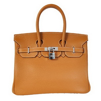 Hermes Birkin 25CM Tote Bags Togo Leather Camel Silver